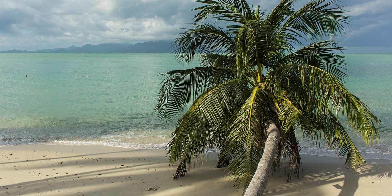 Buchtipp Faszination Thailand