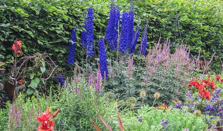 In den Kew Gardens