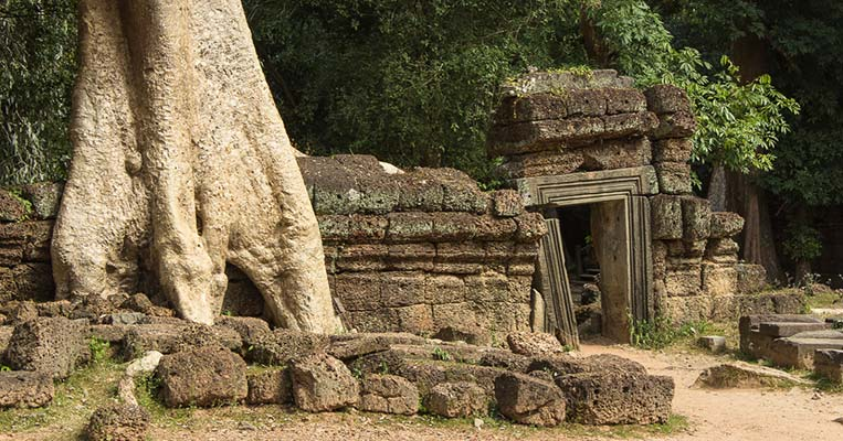 In den Ruinen von Ta Prohm