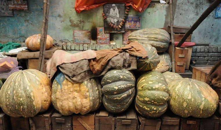 Kulinarisch ist Indien für Vegetarier eine Offenbarung | Foto: Heiko Meyer