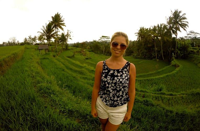 Die Reisfelder in Ubud