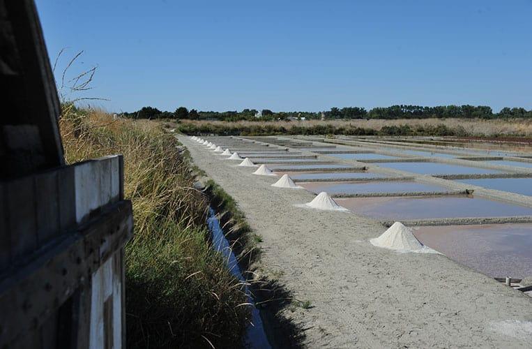 Salzgärten an der Französischen Atlantikküste
