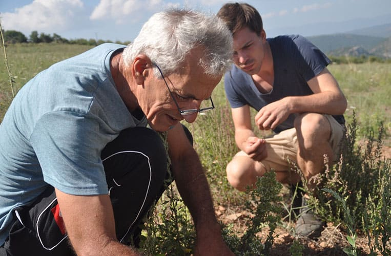 Bauern Ilias bei der Arbeit