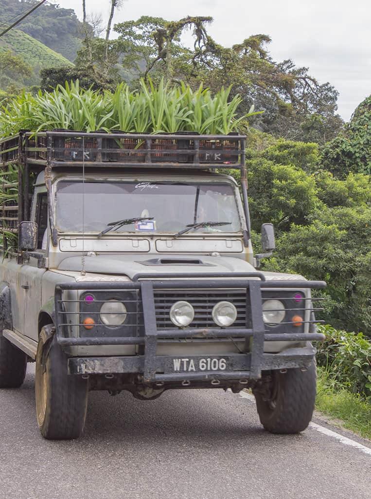 mit dem Land Rover wird in den Cameron Highlands alles transportiert