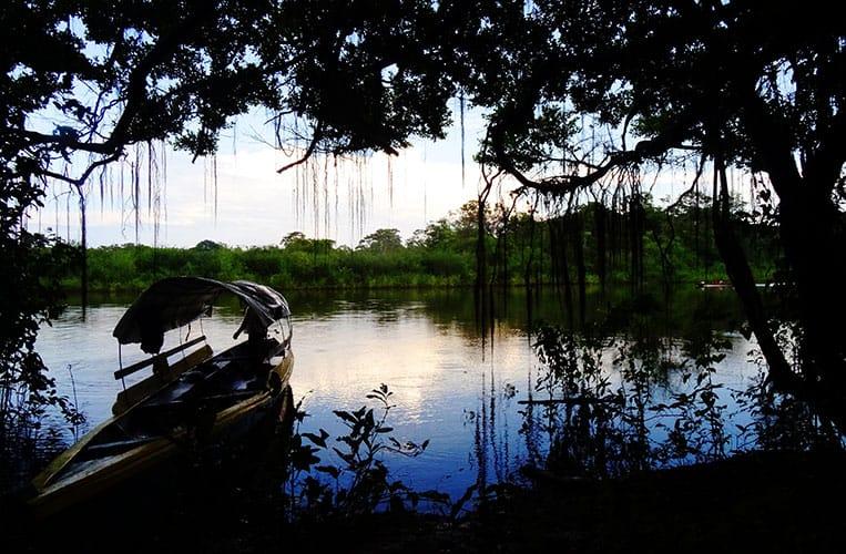 Beim kurzen Zwischenstopp am árbol parásito