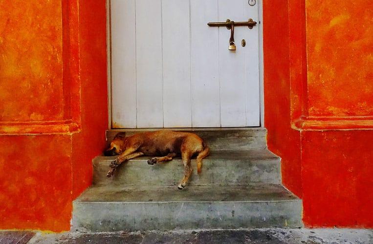 in den romantischen Gassen von Cartagena de Indias, Kolumbien