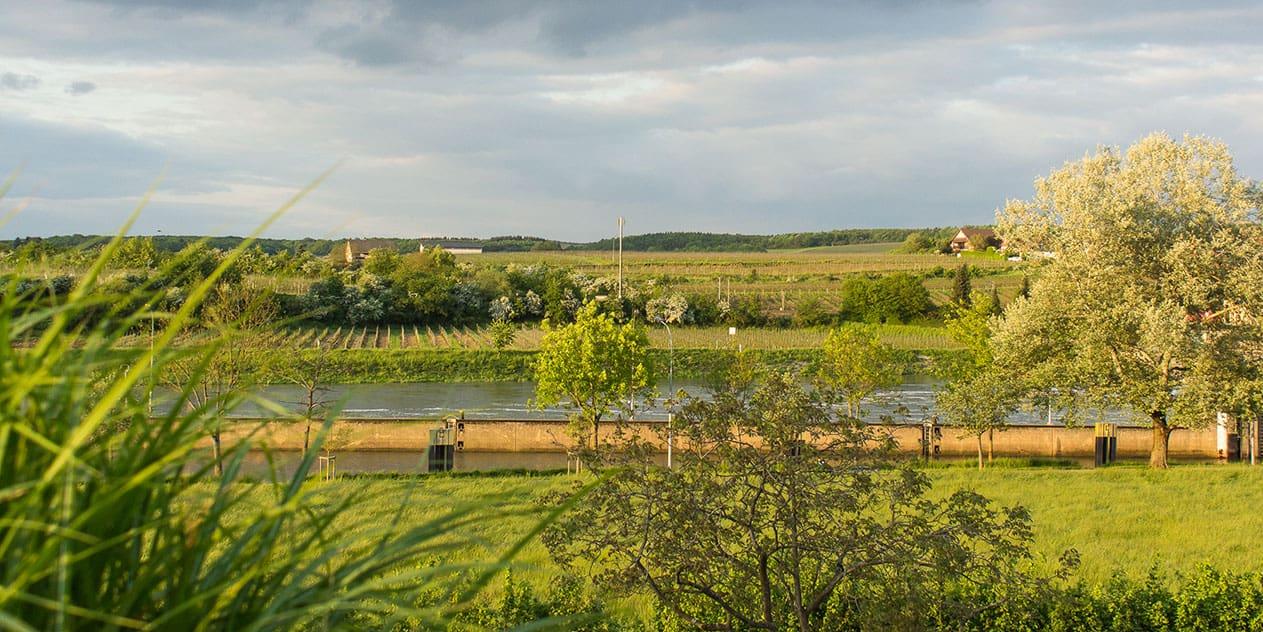 Die luxemburgische Mosel entdecken | Reisehappen