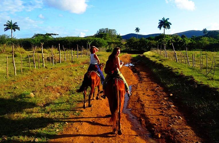 Die sattgrünen Felder und Hügel Kubas zu Pferde entdecken