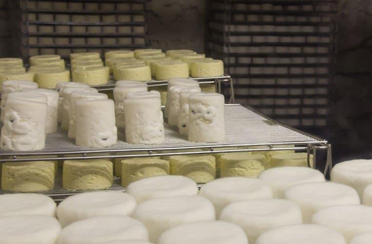 Hier reift der Käse