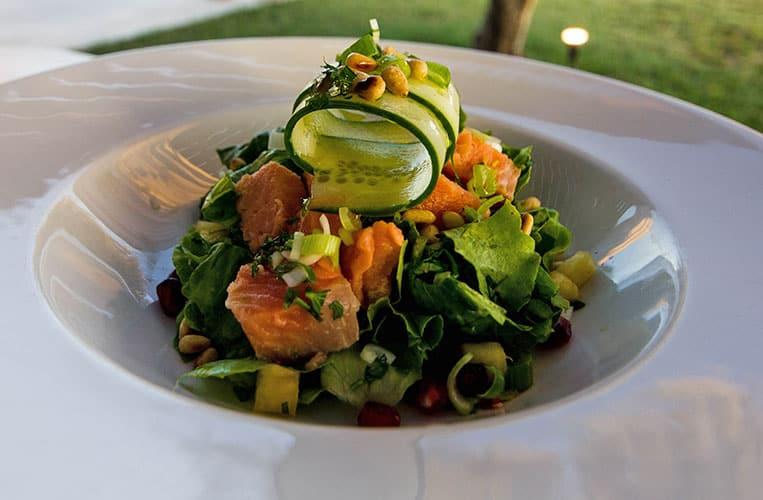 Lachs auf bunten Salat