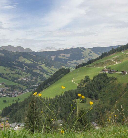 Natur & Genuss Pur in Saalbach-Hinterglemm