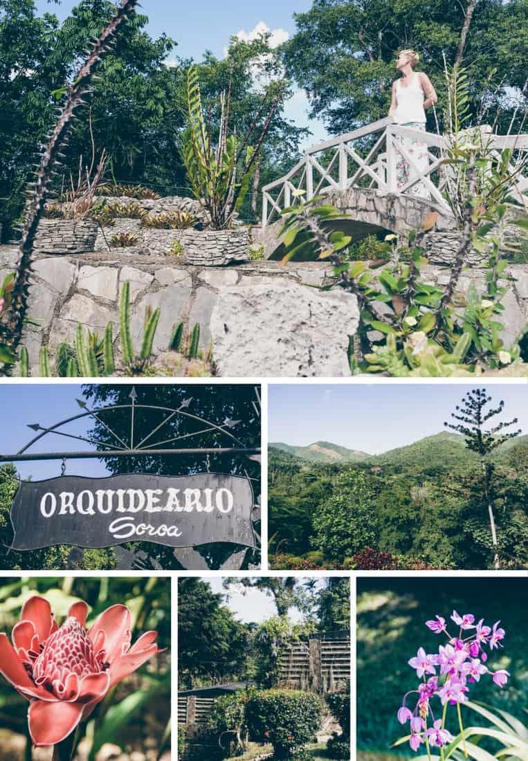 Orchideengarten in Soroa, Kuba