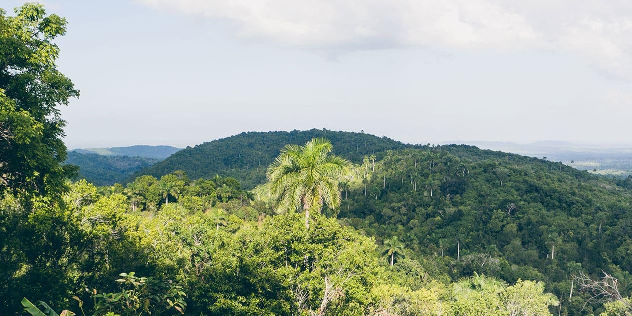 Soroa und Las Terrazas – Kubas Westen