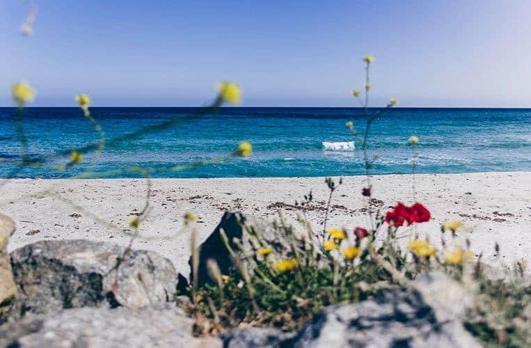 Plage de Bodri, Korsika
