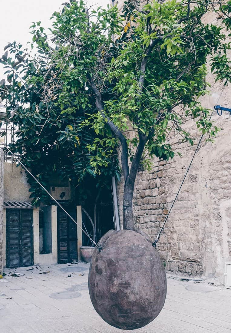 Suspended Orange Tree – Old Jaffa