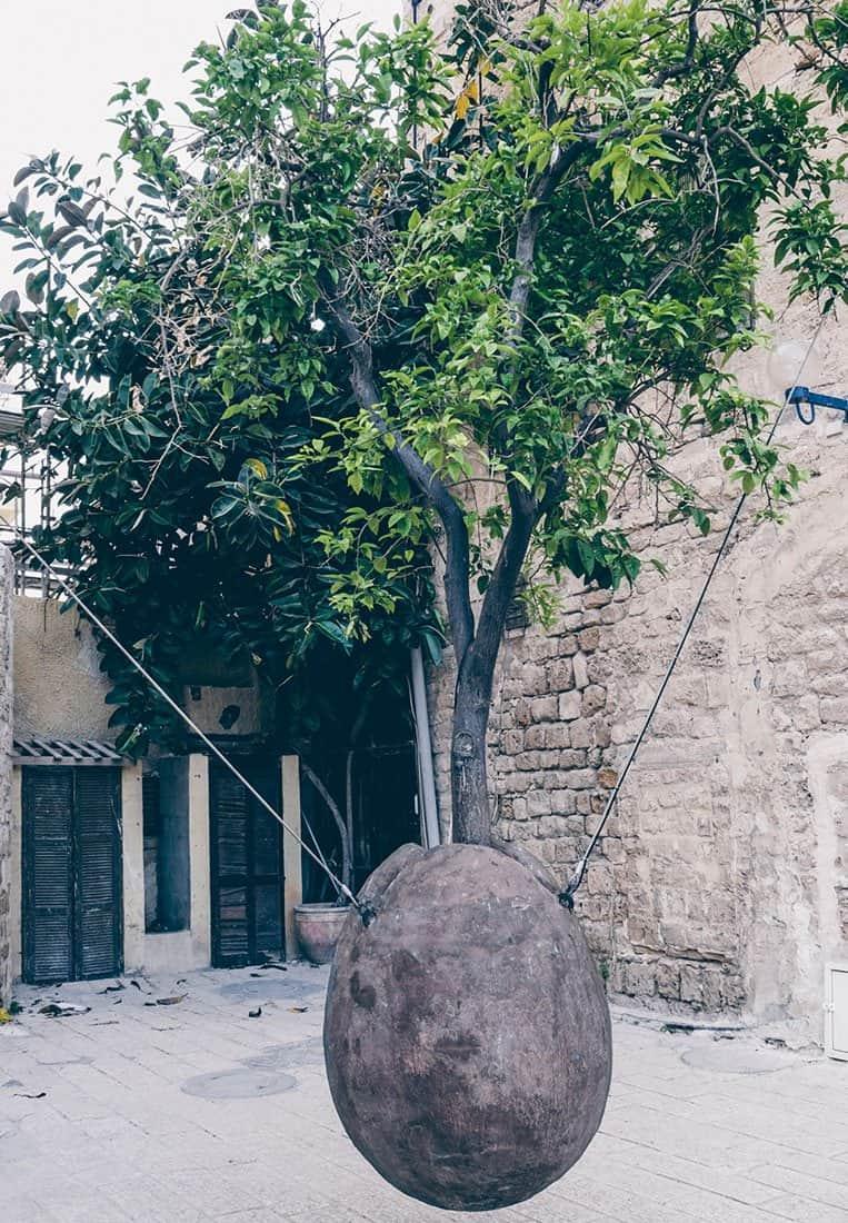 Suspended Orange Tree – Old Jaffa