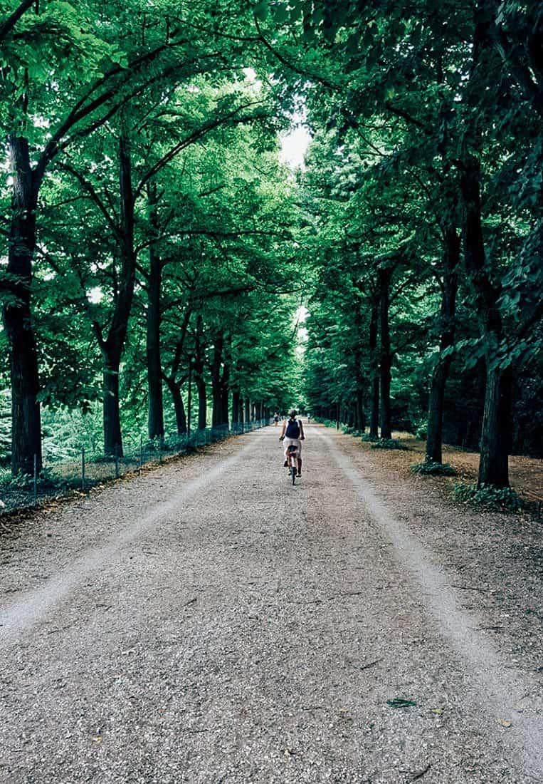 Das historische Ferrara mit dem Fahrrad entdecken