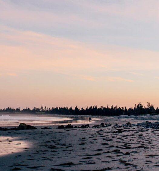 Das Stellar Beach Feast im White Point Beach Resort