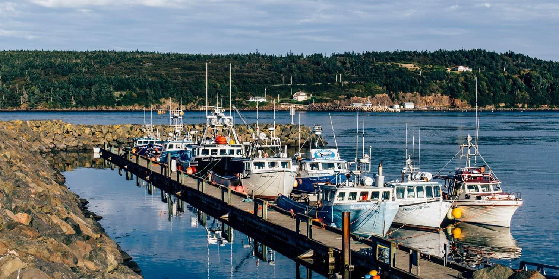 Digby – Nova Scotia: von Scallops, Naturwundern und Buckelwalen