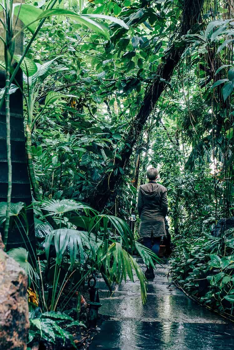 Der Botanische Garten Erlangen
