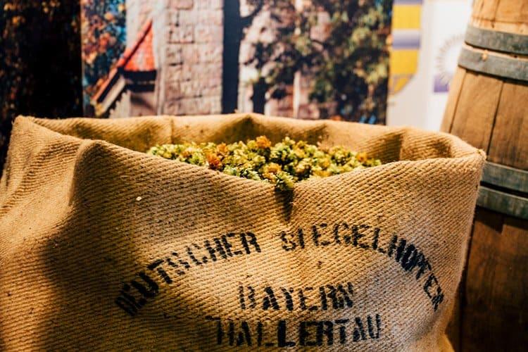 Die Brauerei Steinbach Bräu