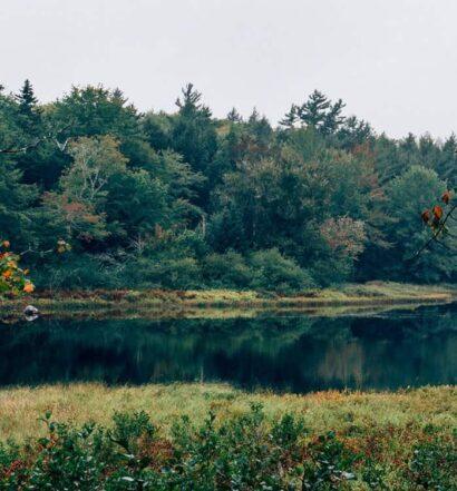 Bezaubernde Tage und magische Nächte im Kejimkujik National Park