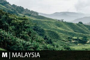 Reiseziel Malaysia