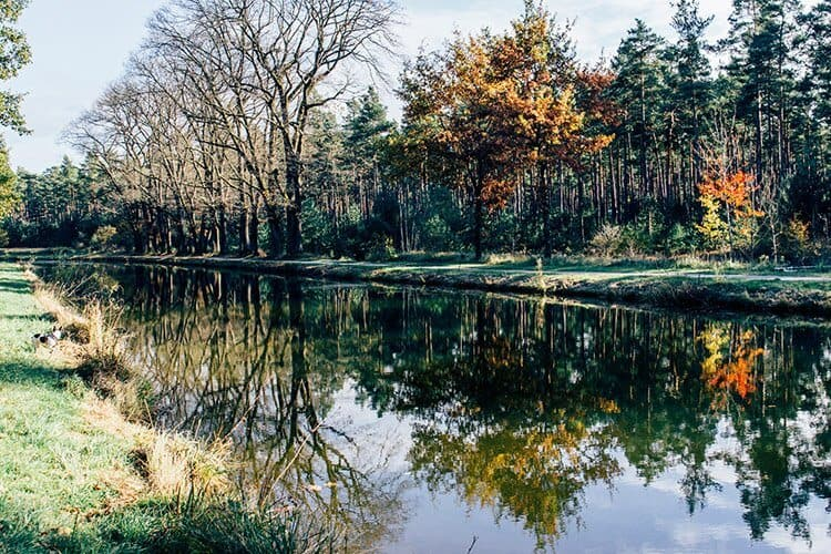 Herbstidylle am Ludwig-Main-Donau-Kanal
