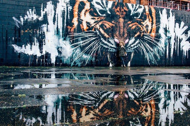 """Glasgow Tiger"""