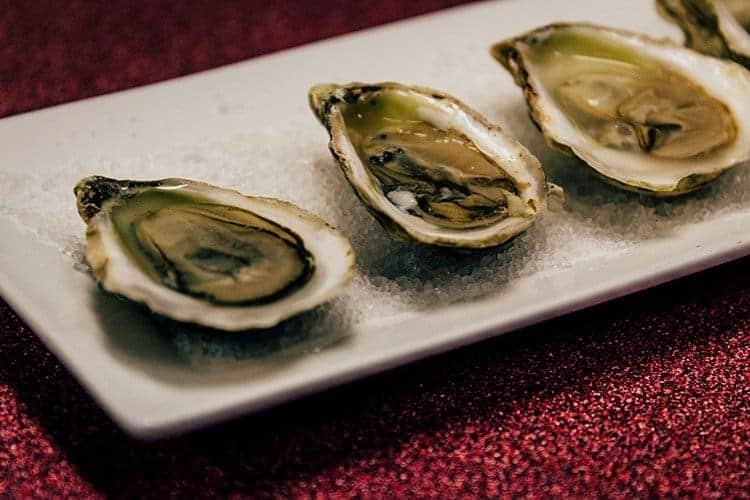 Malpeque Austern
