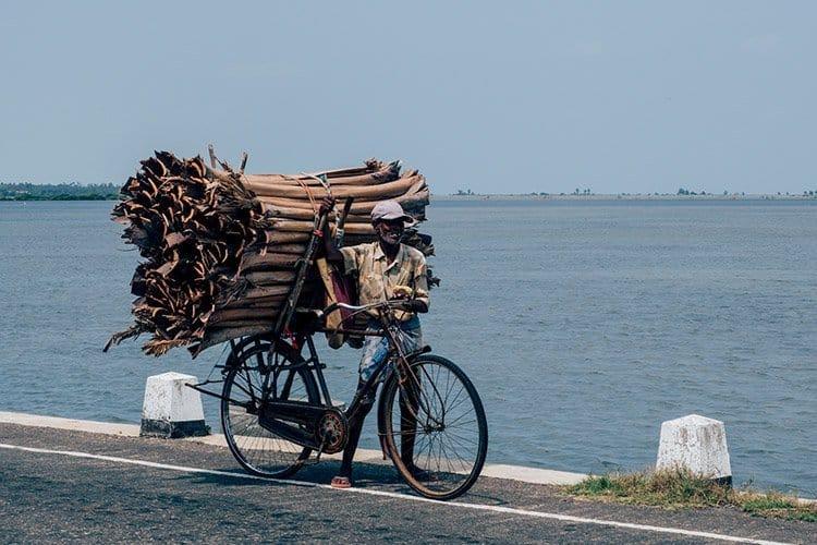 Jaffna – Sri Lankas unbekannter Norden