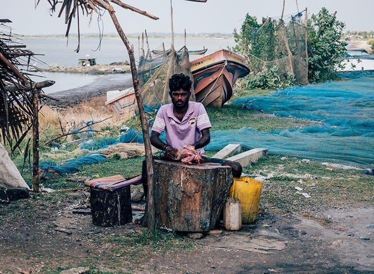 Der Fischmarkt in Jaffna