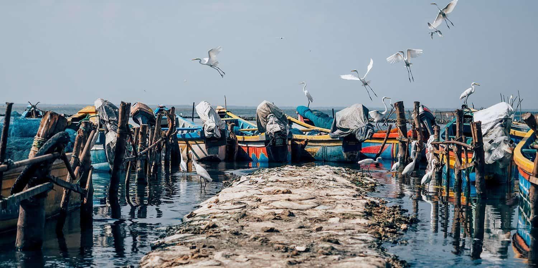 Reisetipps für Jaffna – Sri Lankas unbekannter Norden | Reisehappen