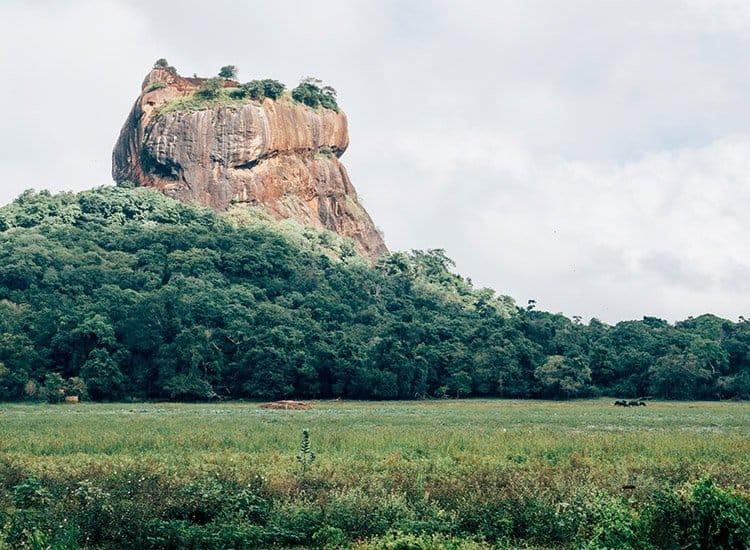 Sigiriya – der Löwenfels