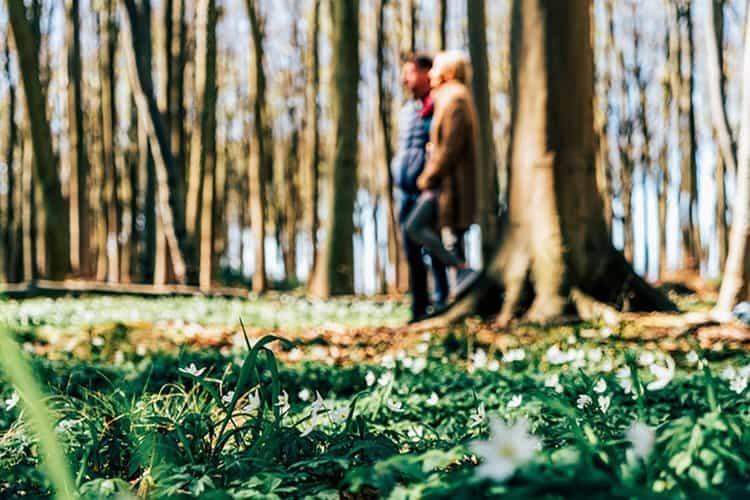 Wandern an der Ostseeküste – erleben wie Flora und Fauna aus dem Winterschlaf erwachen