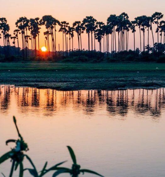 Sri Lanka Rundreise – Meine Reisetipps und Highlights