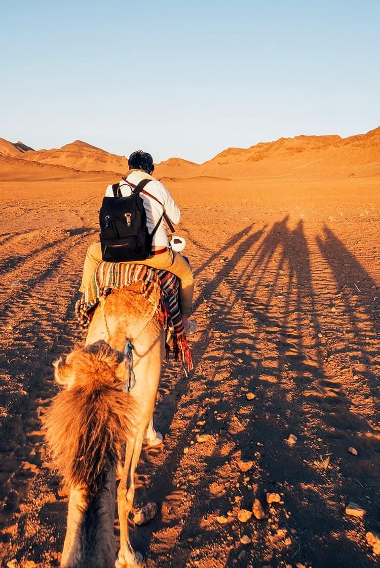 Zagora – das Tor zur Wüste