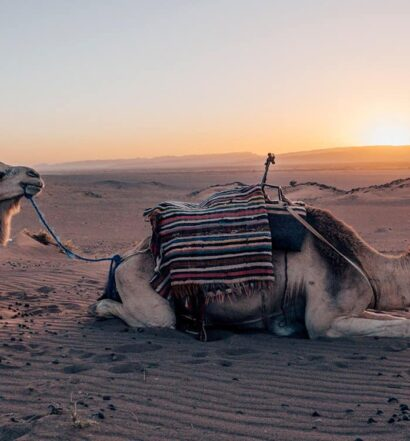Zagora – das Tor zur Wüste Marokkos