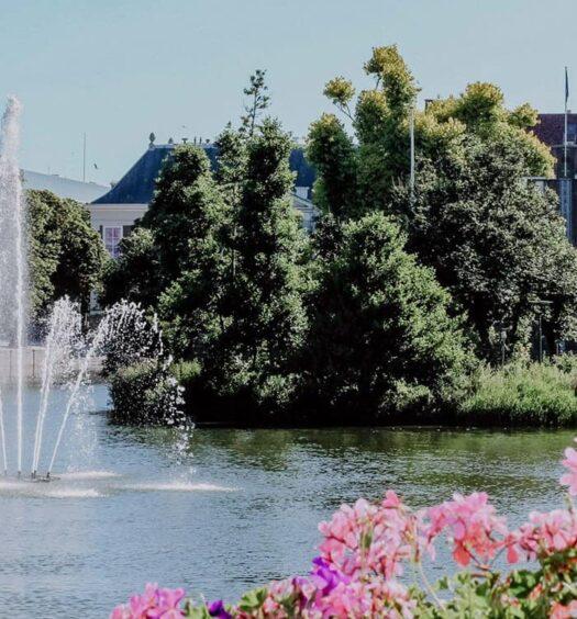 City & Food Guide – Ein Wochenende im niederländischen Den Haag. Insidertipps für die schönsten Sehenswürdigkeiten und Restaurants für deine Städtereise.