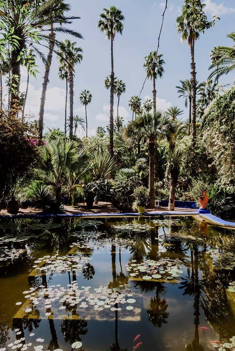 Der Jardin Majorelle