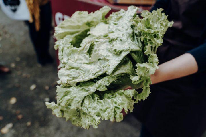 Steirischer Kochkurs – der Genussbauernhof Hillebrand