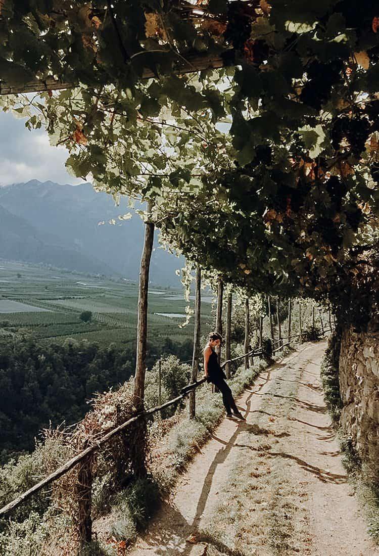 Törggele Ausflug und Wanderung auf einem Waalweg