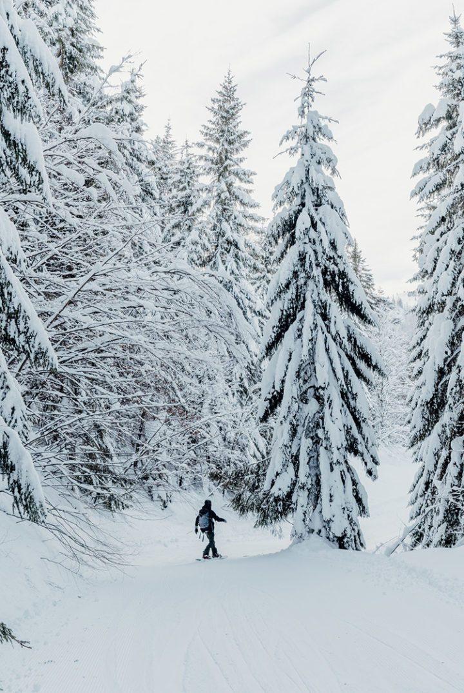 Reit im Winkl - Skifahren im Skigebiet Winklmoosalm Steinplatte