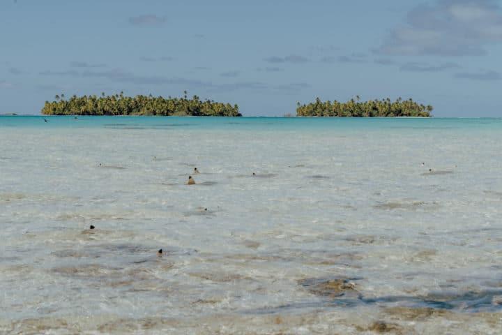 Ausflug Blaue Lagune Rangiroa Tuamotu Archipel