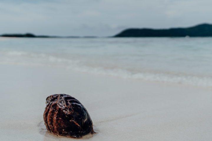 Motu Tapu – Bora Bora, Polynesien