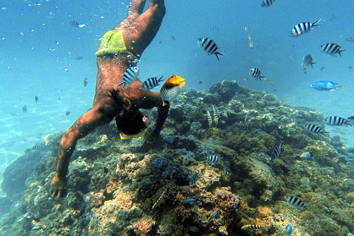 Schnorcheln Bora Bora – Französisch Polynesien