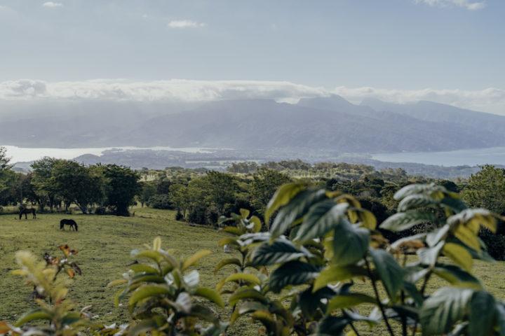 Plateau de Taravao Tahiti