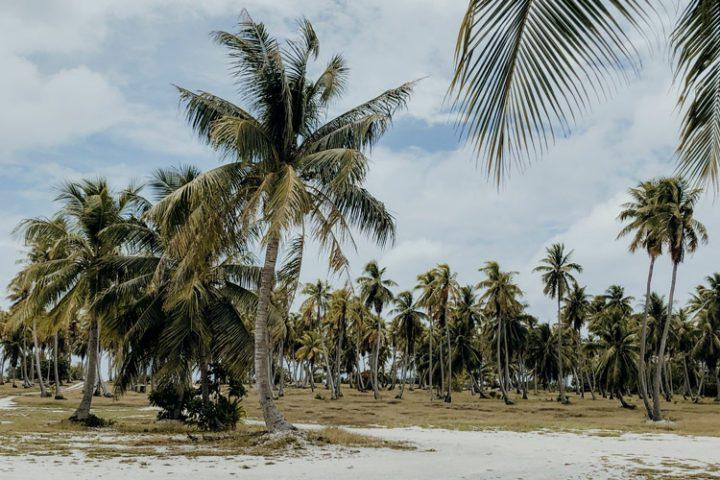 Rangiroa Tuamotus Französisch Polynesien