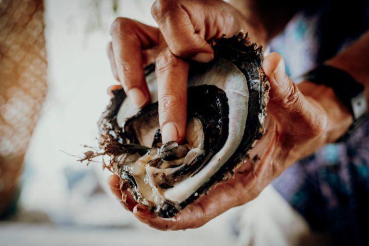 die Perlenfarm Gauguins Pearl Rangiroa