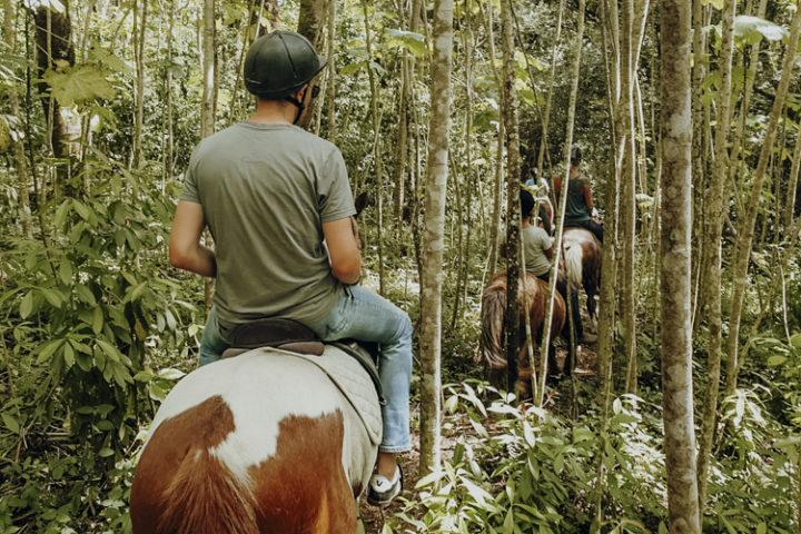 Ranch du Plateau Rauvau Afaahiti – Reiten auf Tahiti